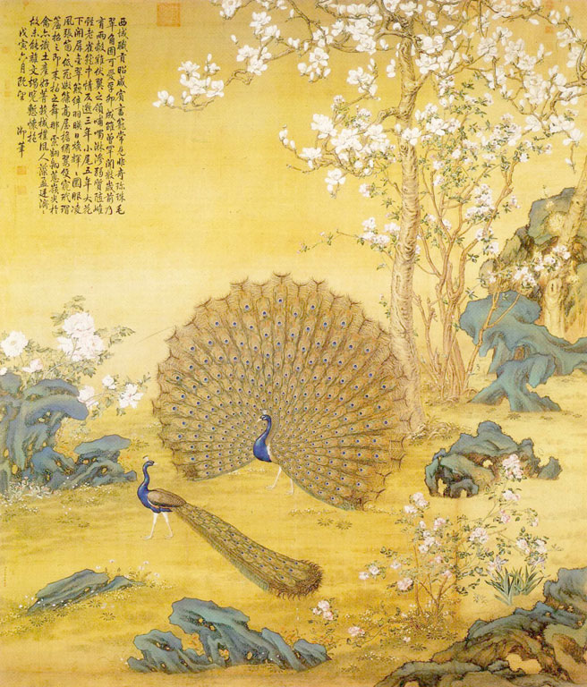 Two peacocks in a clearing, flowering tree in the background