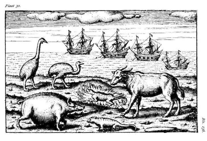 Black and white drawing or print of various animals on the shore, four ships in the background