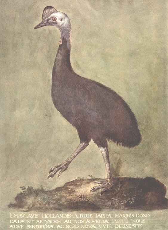 Fig.12b