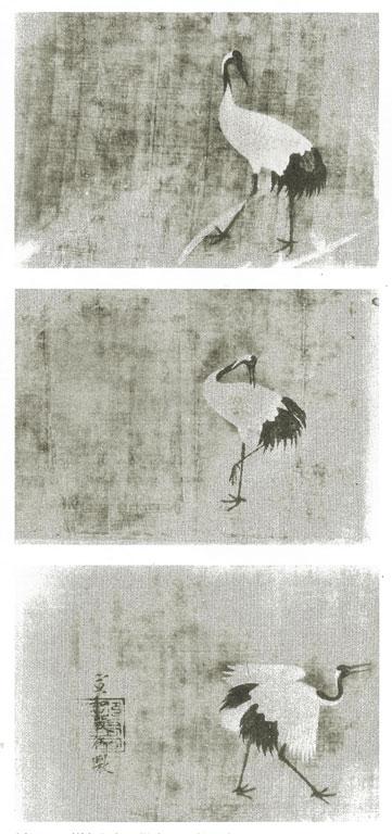 Three cranes in different postures