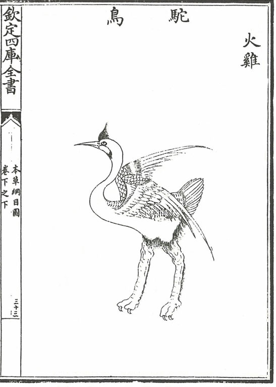 Black on white line drawing of a crane (or emu?) with improbably muscular legs
