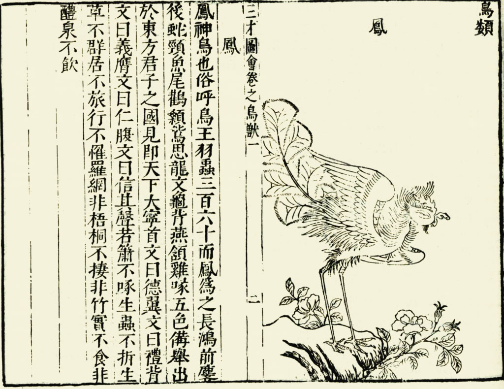 On the left, Chinese text, on the right, a line drawing of a similarly hybrid bird